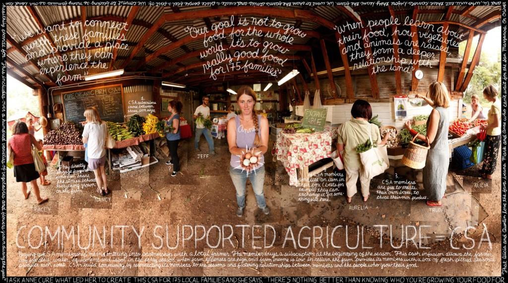 lexicon of sustainability, food movement, nonprofit