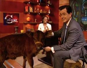 Colbert, Heifer International, nonprofit public relations