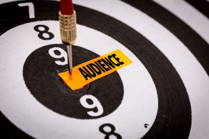 target Audience nonprofit